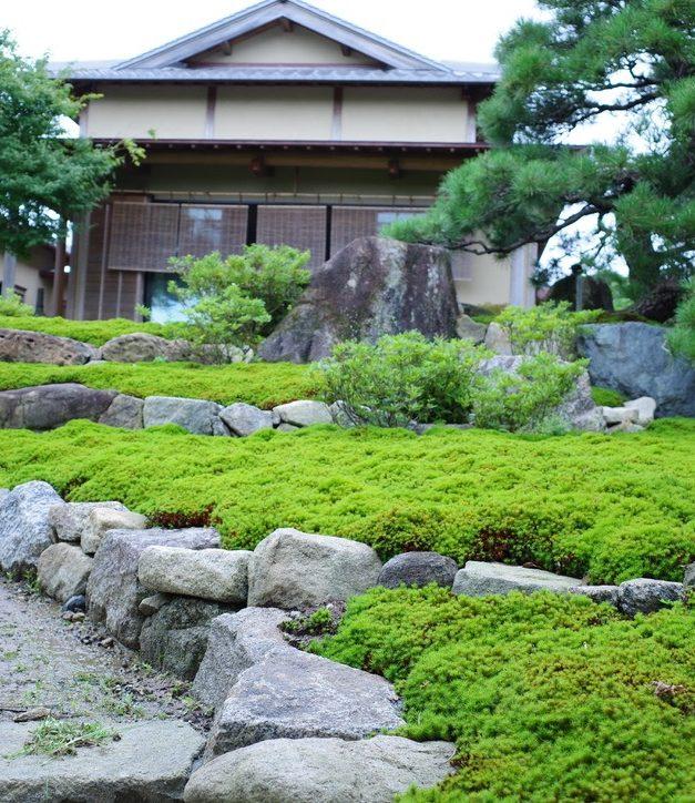 杉苔と相性の良い土はどれ?長持ちさせるための土の選定